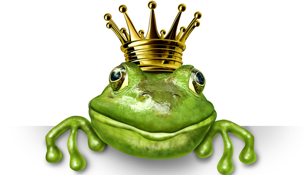 principe-sapo